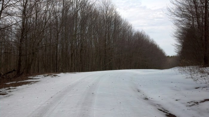 Partridge Hill Road was covered with snow despite temperatures on Sunday in the 60s.